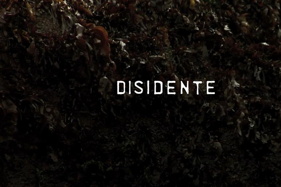 disidente_02